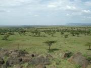 沈まぬ太陽 ケニア 31