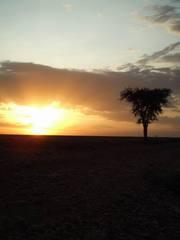沈まぬ太陽 ケニア 65